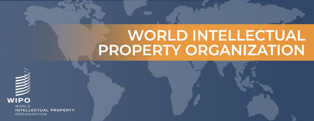 国家专利申请_如何选择_获专利发明